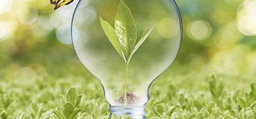 <p>ENERGY</p>